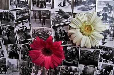 Pamięci Powstańców Warszawskich