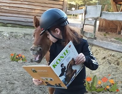 Dzień Konia